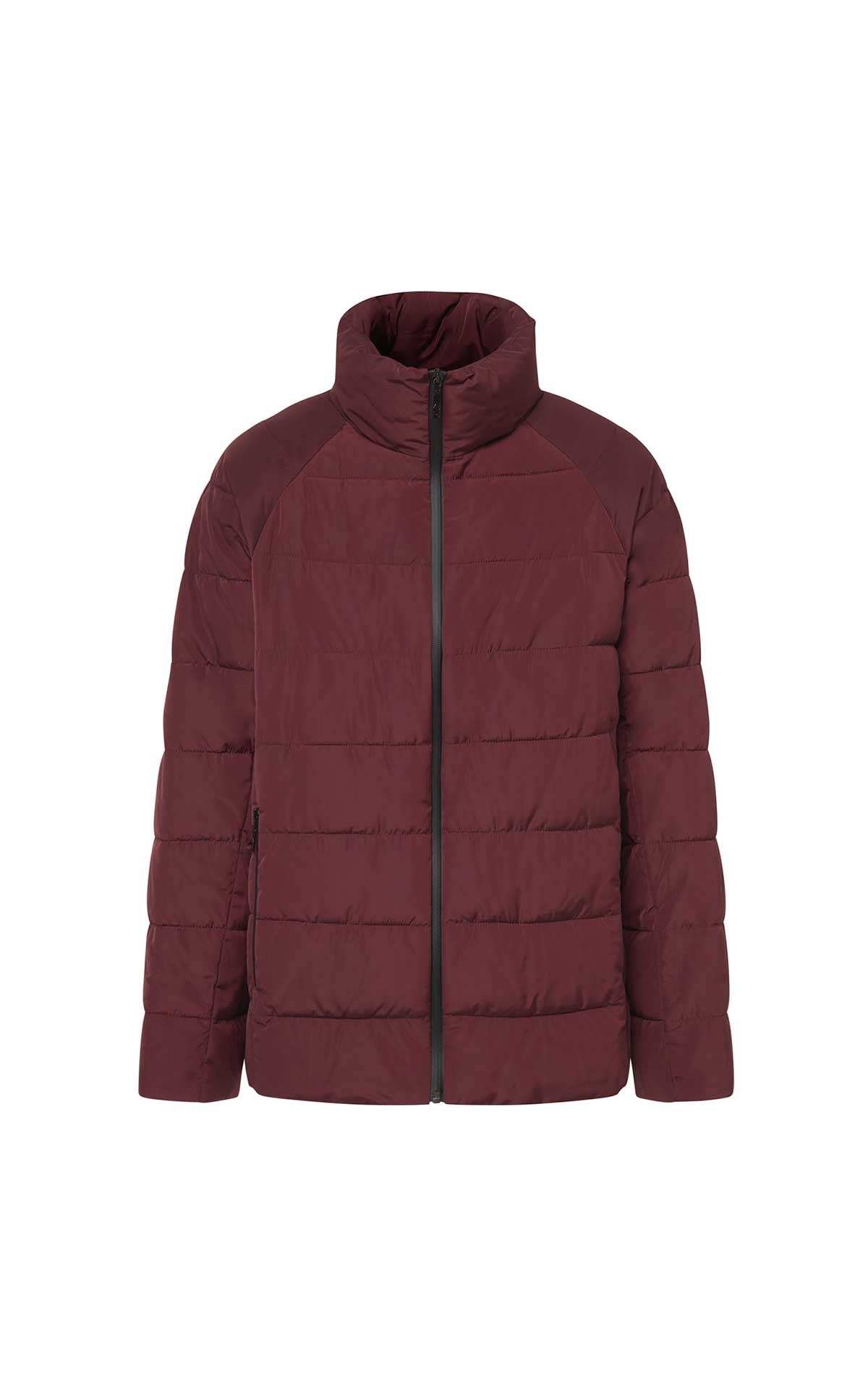 Bordeaux down jacket for men Adolfo Dominguez