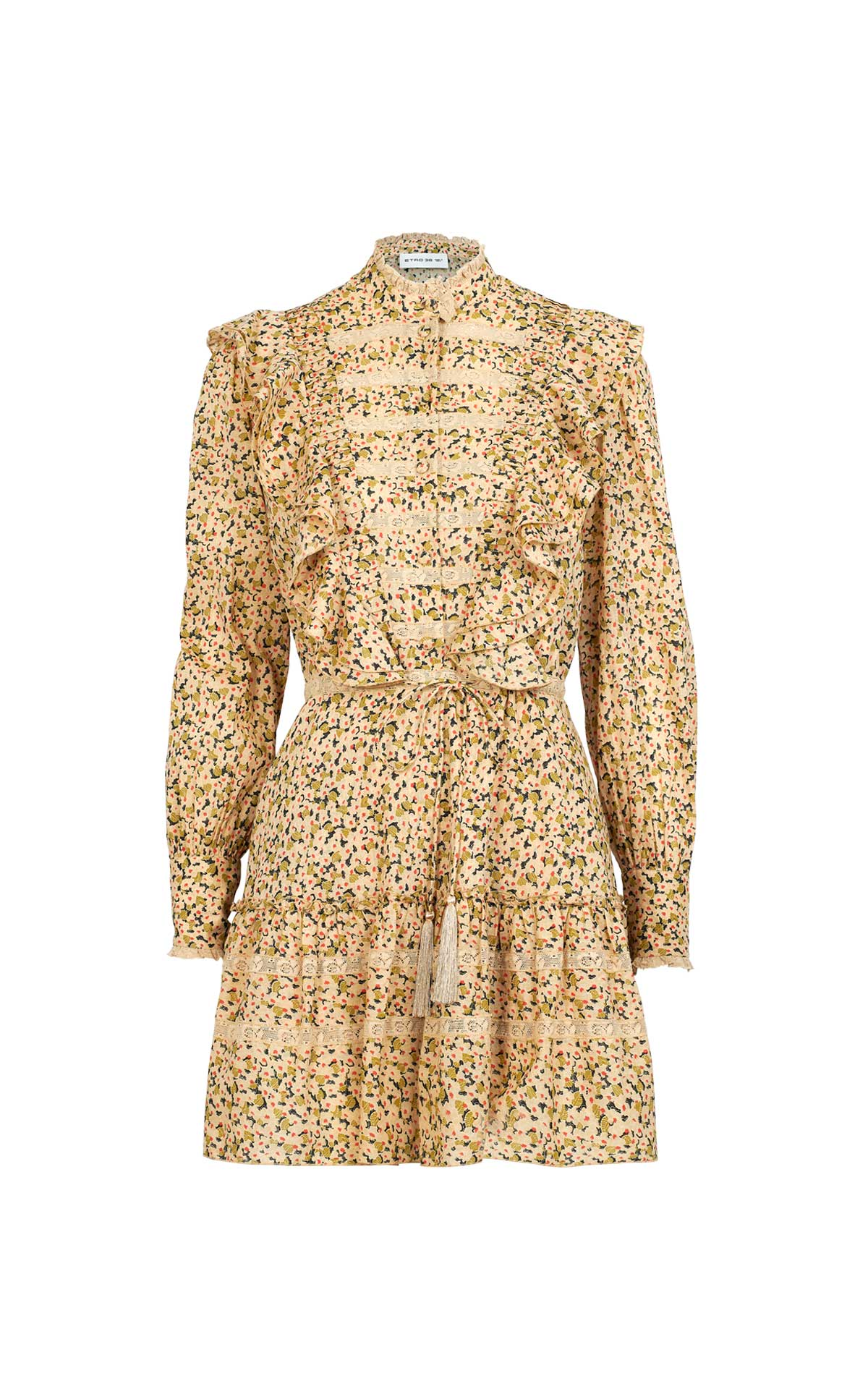 Brown printed dress for woman Etro