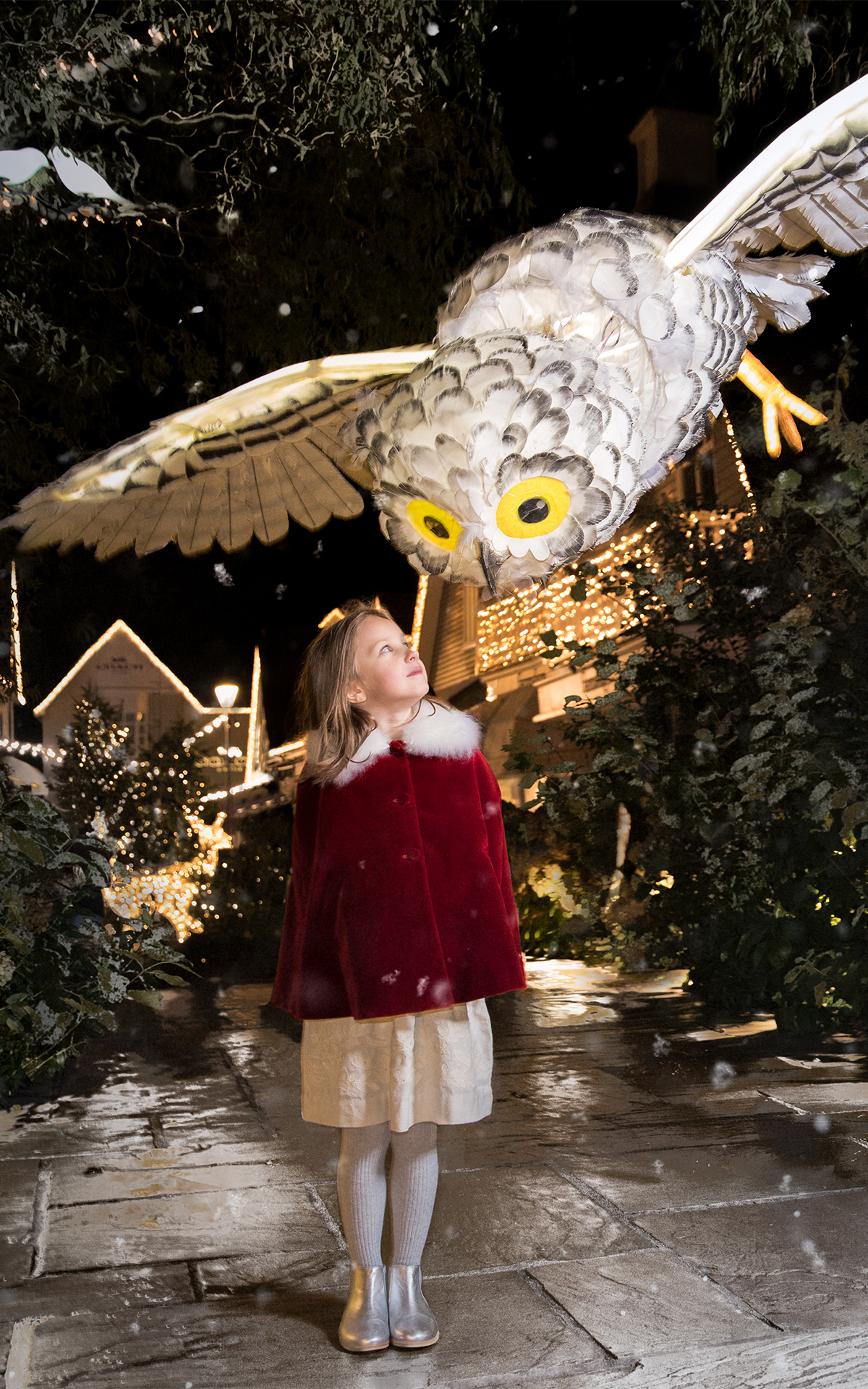 Christmas entertainment image of Owl in Village