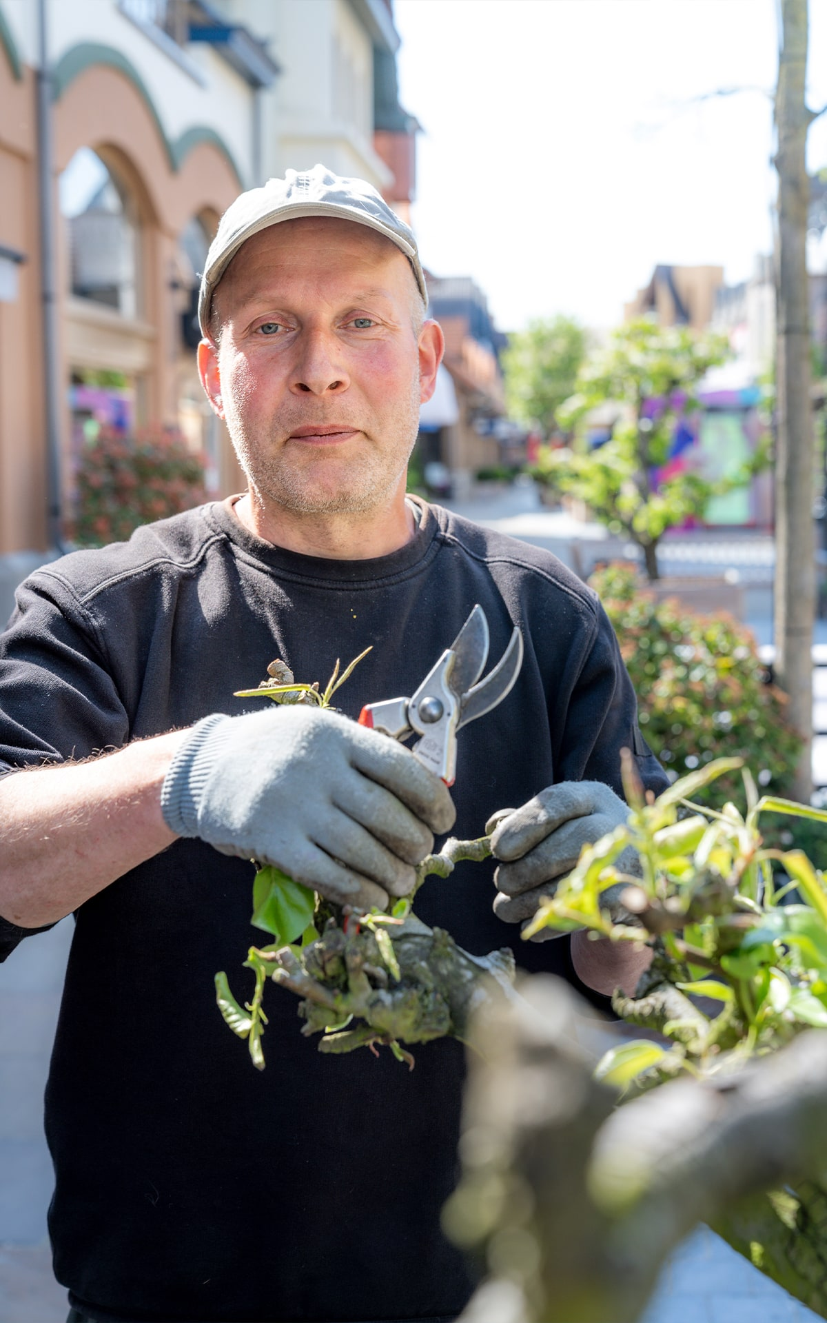 A team of three gardeners works three to four days a week at Maasmechelen Village – from the initial conception of a particular design and choosing the plants to then planting, mowing, weeding, and pruning.